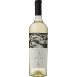 La Linda High Vines Sauvignon Blanc Mendoza