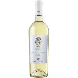 Il Pumo Sauvignon Malvasia Bianco Salento IGP Cantine San Marzano