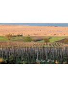Burgenland Wina Austiackie - Regiony Winiarskie - Sklep z Winem Bachus
