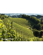 Steiermark (Styria) Austria - Regiony Winiarskie - Sklep z Winem Bachus