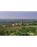 Bardolino - Regiony Winiarskie - Sklep z Winem Bachus