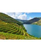 Dao Portugalia - Regiony Winiarskie - Sklep z Winem Bachus