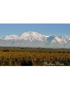 Agrelo Wina Argentyny - Regiony Winiarskie - Sklep z Winem Bachus