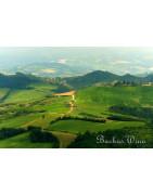 Emilia Romagna - Regiony Winiarskie - Sklep z Winem Bachus
