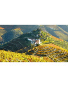 Douro Valley Wina Portugalskie - Regiony Winiarskie - Sklep z Winem Bachus