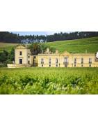 Lisboa Wina Portugalskie - Regiony Winiarskie - Sklep z Winem Bachus