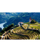Tejo Wina Portugalii - Regiony Winiarskie - Sklep z Winem Bachus