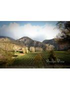 Nelson Wina Nowej Zelandii - Regiony Winiarskie - Sklep z Winem Bachus
