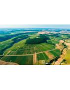 Mont de Milieu Chablis - Regiony Winiarskie - Sklep z Winem Bachus