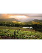 Western Cape Wina RPA - Regiony Winiarskie - Sklep z Winem Bachus