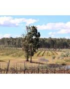 Beechworth Wina z Australii - Regiony Winiarskie - Sklep z Winem Bachus