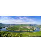 Mozela Wina Niemieckie - Regiony Winiarskie - Sklep z Winem Bachus