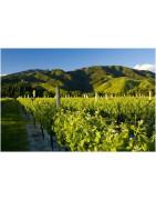 Nowa Zelandia - Regiony Winiarskie - Sklep z Winem Bachus
