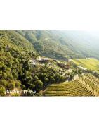 Casablanca Valley - Regiony Winiarskie - Sklep z Winem Bachus