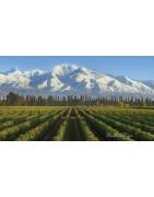 Mendoza - Regiony Winiarskie - Sklep z Winem Bachus