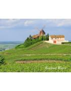 Szampania Region Champagne - Regiony Winiarskie - Sklep z Winem Bachus