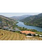Douro Wina Portugalskie - Regiony Winiarskie - Sklep z Winem Bachus