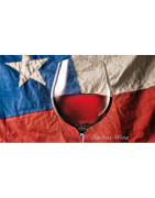 Chile Wina - Regiony Winiarskie - Sklep z Winem Bachus