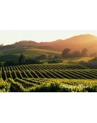 Napa County USA Wina - Regiony Winiarskie - Sklep z Winem Bachus