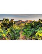 Livermore Valley USA Wina - Regiony Winiarskie - Sklep z Winem Bachus