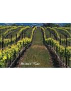 Santa Barbara County USA Wina - Regiony Winiarskie - Sklep z Winem Bachus