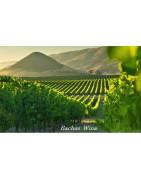 Central Valley USA Wina - Regiony Winiarskie - Sklep z Winem Bachus