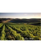 Washington USA Wina - Regiony Winiarskie - Sklep z Winem Bachus