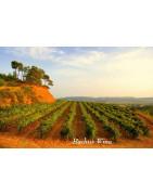Penedes Wina - Regiony Winiarskie - Sklep z Winem Bachus
