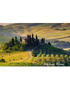 Chianti - Regiony Winiarskie - Sklep z Winem Bachus