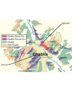Chablis - Regiony Winiarskie - Sklep z Winem Bachus