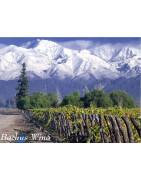 Maipo Valley - Regiony Winiarskie - Sklep z Winem Bachus