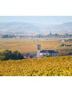 Pommard - Regiony Winiarskie - Sklep z Winem Bachus