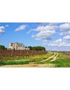Salento Wina - Regiony Winiarskie - Sklep z Winem Bachus