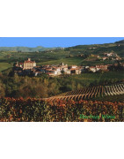 Katalonia (Catalan wine) - Regiony Winiarskie - Sklep z Winem Bachus