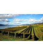 Rias Baixas - Regiony Winiarskie - Sklep z Winem Bachus