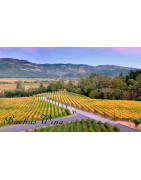 Napa Valley California - Regiony Winiarskie - Sklep z Winem Bachus
