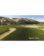 Wairarapa Nowa Zelandia - Regiony Winiarskie - Sklep z Winem Bachus
