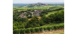 Laporte Sancerre Winery