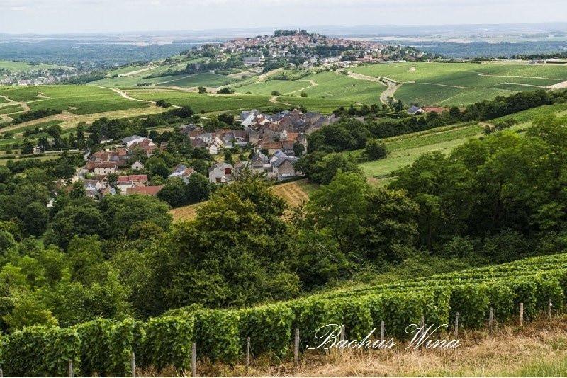 Laporte Sancerre Winery