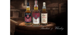 Springbank Whisky Destylarnia