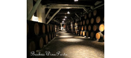 Sogevinus Fine Wines Porto