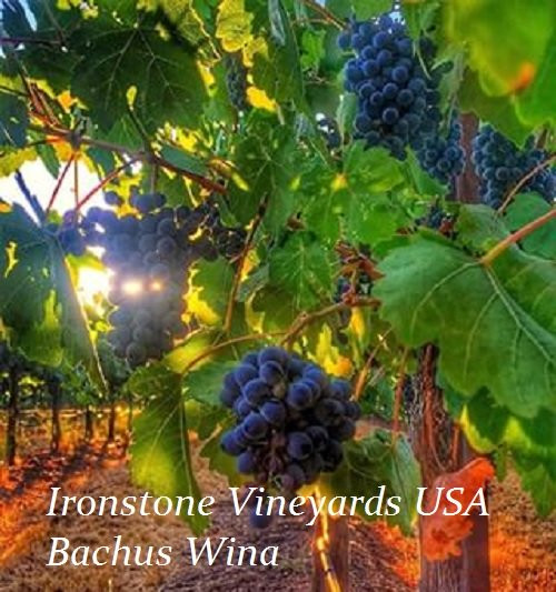 Ironstone Vineyards USA