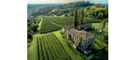 Vinicola Serena Veneto