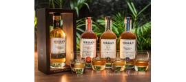 Mezan Rum Distillery