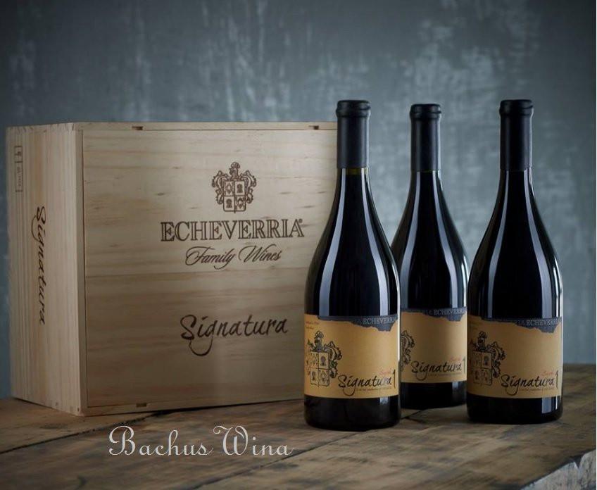 Echeverria Wina z Chile