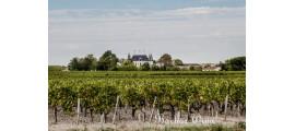 Chateau Palmer Margaux
