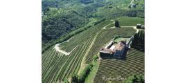 Tenute SalvaTerra Veneto