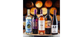 Scotto Cellars Family Wines Lodi