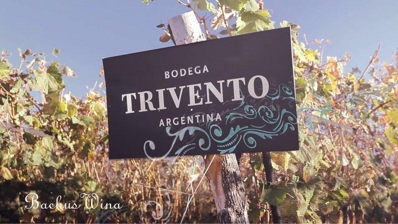 Trivento Bodega Argentyna
