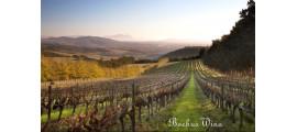 Delheim Wines wina RPA